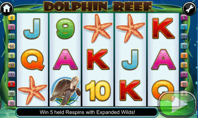 Dolphin Reef Screenshot
